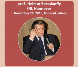 Bertalanffy Brain Stem Neurosurgery